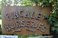 Finchley Nurseries