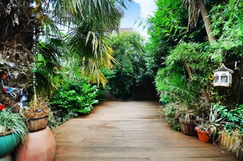 Rear Garden in SW2