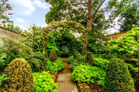 Garden in SW15