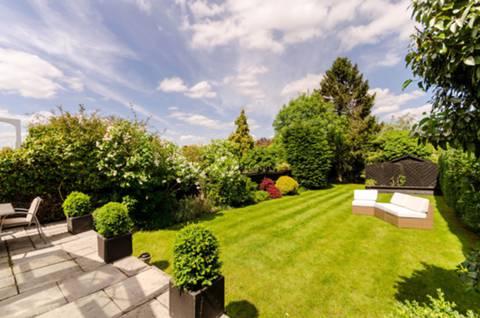 Garden in KT4