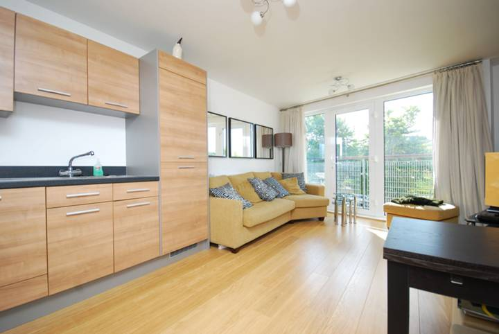 <b>Reception Room/Kitchen</b><span class='dims'> 20'  x 13'2 (6.10 x 4.01m)</span>