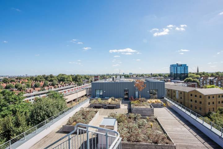 Communal Roof Terrace in W4