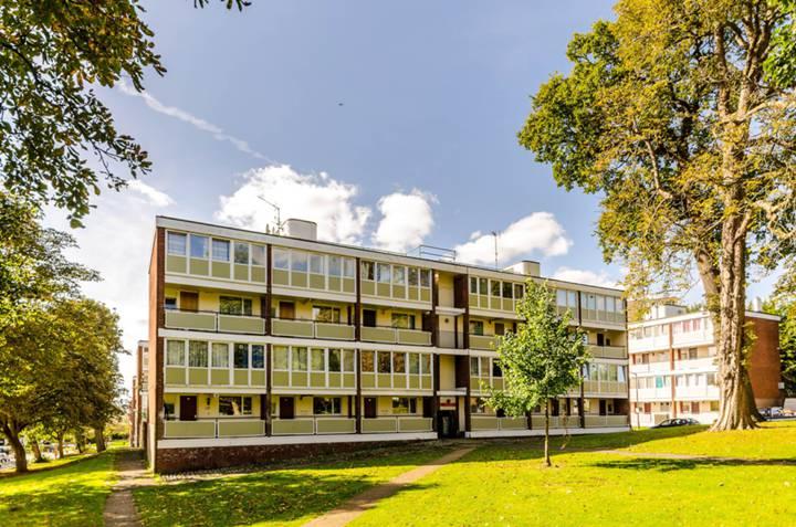 Ibsley Gardens, Roehampton