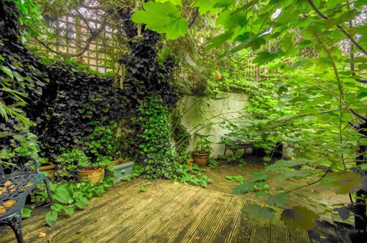<b>Garden</b><span class='dims'></span>