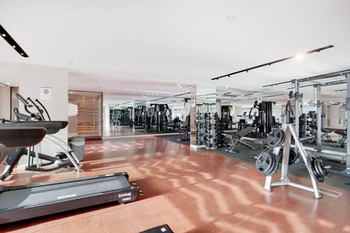 <b>Gym</b><span class='dims'></span>